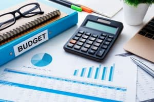 Budgeting or Expense Tracking: How Much is Enough? - Can I